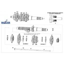 Eclaté tige embrayage et BV moteur MAXTER MXO/MXS